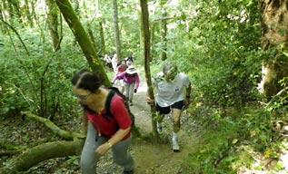 CLO marche, culture loisirs orvault, association, activité