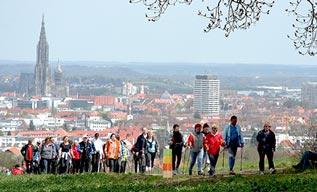 Marche nordique, culture, loisir, Orvault, CLO, activité, association